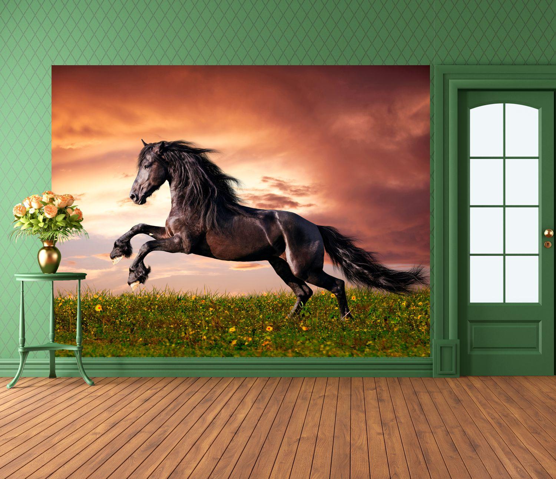 poster fototapete selbstklebend tiere pferd wild ebay. Black Bedroom Furniture Sets. Home Design Ideas